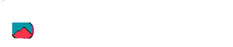 Bionica Logo